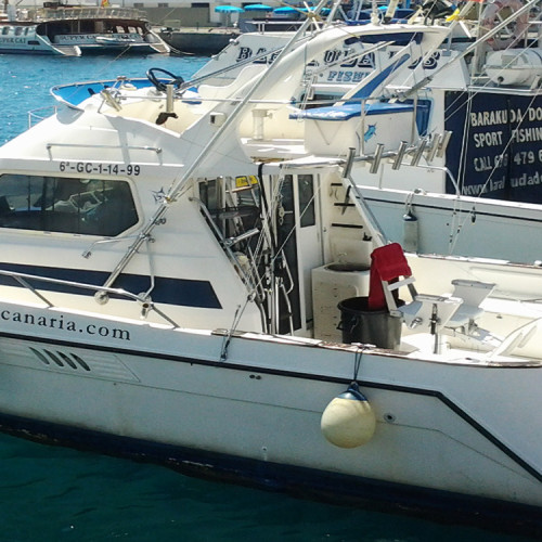 Barco para pesca de altura6 plazas